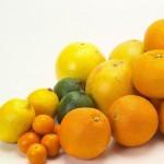 花粉症に効く果物はじゃばら?柑橘系や金スマや和歌山県が産地?