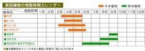 北海道の花粉飛散カレンダー