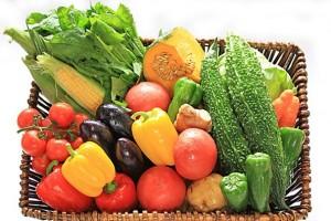 野菜と果物