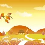 秋の花粉症アレルギーの対策や原因予防!夏や風邪との違いは?